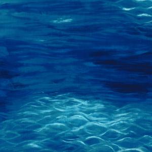 C3074_Aqua